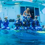 Cheap Great Barrier Reef Tours