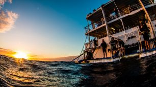 Luxury Liveaboard  Great Barrier Reef
