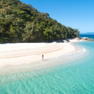 Great Barrier Reef half-day tours,