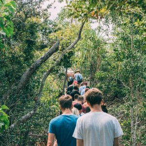 Follow your guide on the bushwalk  up to Hill Inlet Lookout