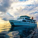 Great Barrier Reef DEAL – Liveaboard