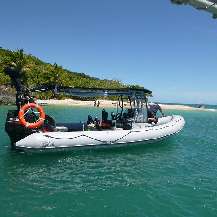 Great Barrier Reef Tours Discover The Best Snorkelling And