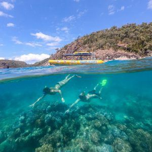 The Ocean Raft can get quite close to the reef, so you can snorkel straight off the side.