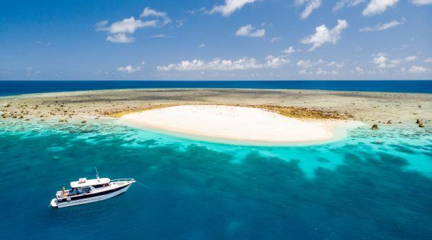 Ashmore Banks Sand Cay Snorkel Tour